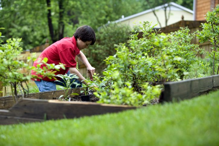 cute-young-boy-gardening-in-his-home-backyard-725×483