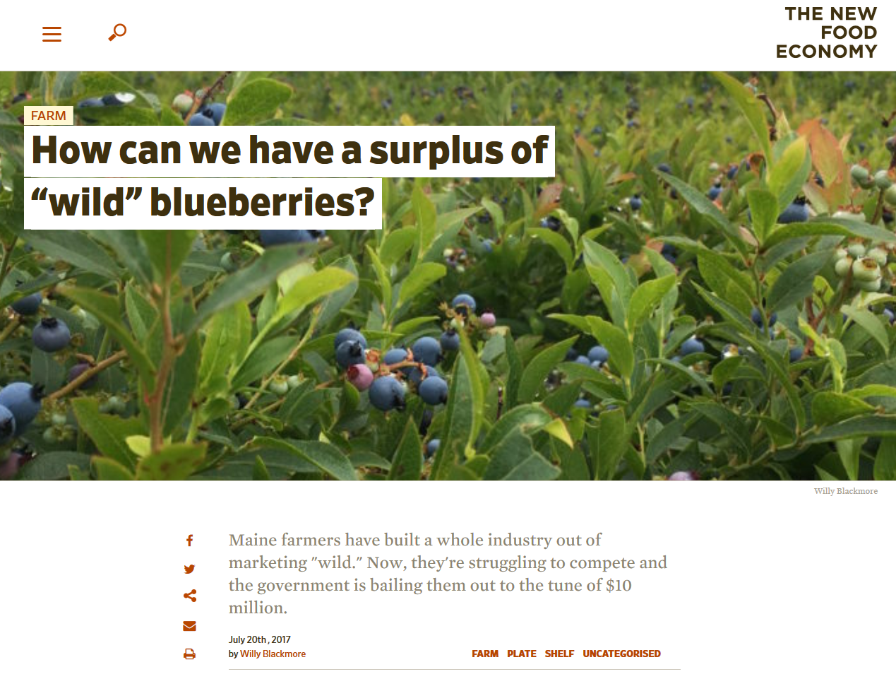 "New Food Economy article ""How can we have a surpluss of wild blueberries?"""