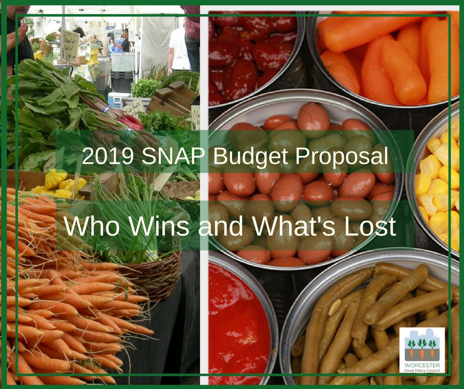 2019 SNAP Budget Proposal