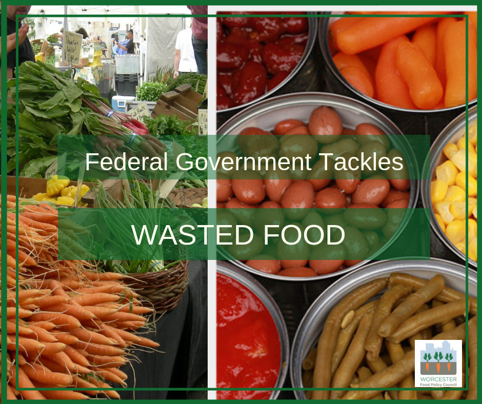 federal govt tackles wasted food