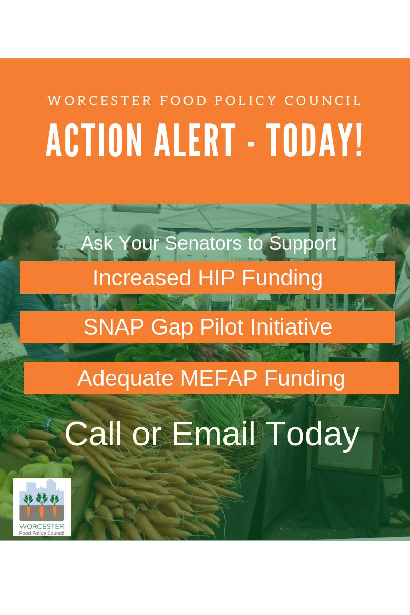 food action alert hip snap mefap